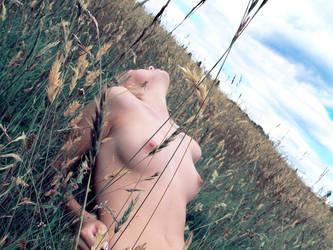 grain... by jrncultfkq