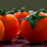 Taste of Sicily by ideareattiva