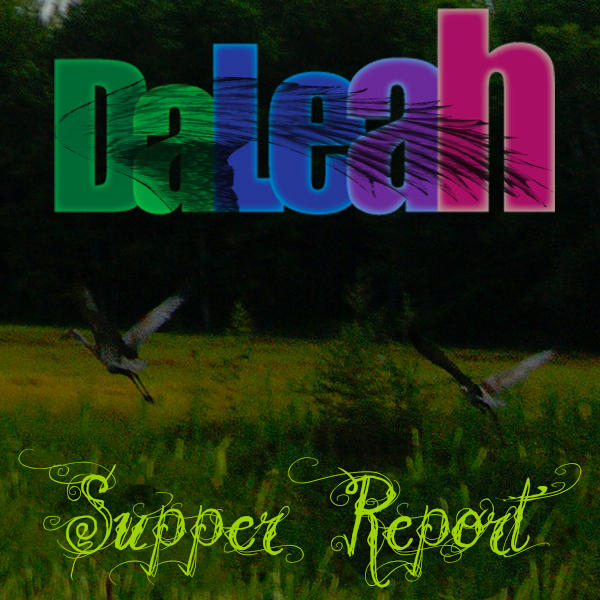 DaLeah Supper Report Cranes by DaLeahWeathers
