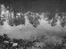 I Fell Asleep Dreaming ... and Drowned. by Atrasylvania