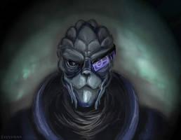 Garrus Vakarian - Mass Effect by Evolvana