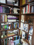 Library by fobia8