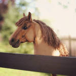 Hobbyhorse 'Jante' by Eponi-hobbyhorses