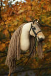 Hobbyhorse 'Emprise du Lion' by Eponi-hobbyhorses