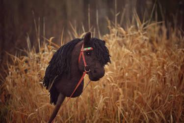 Hobbyhorse pony 'Short Round' by Eponi-hobbyhorses