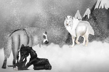 Adler, Kiska and Kanen by WinterVodka-Stables