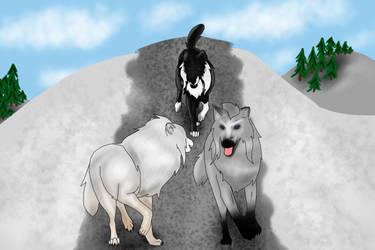 Alder, Kiska and Kanen by WinterVodka-Stables