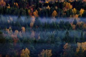 Autumn by henkeliduu