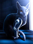 Cyborg Cat by RymNotrim