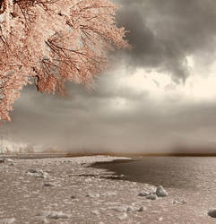 background stock14 by Sophie-Y