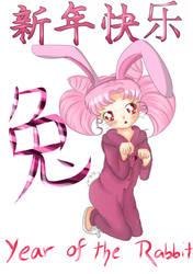 Year of the rabbit:Chibi Usa by lazzibum