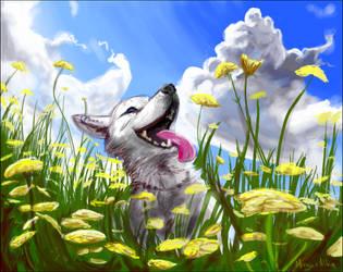 Sunny Days by caroro
