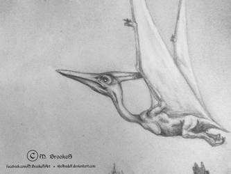 'Colorado: Late Jurassic' CU Pteranodon 1 by she1badelf