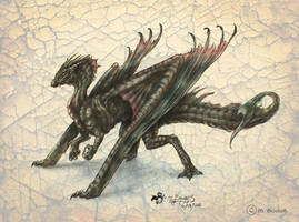 Dragon Concept by she1badelf