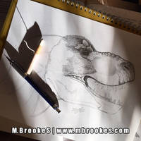 Tyrannosaurus rex Study by she1badelf