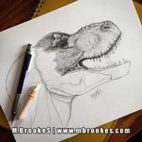 Tyrannosaurus rex Study - Update 2 by she1badelf