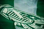 Big Flag by 4ur0n53P