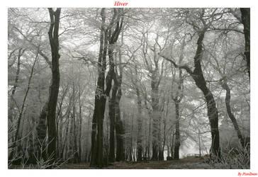hiver by planzman