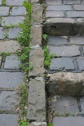 MAS cobblestone 1 by jimmylee1562