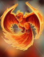 phoenix by VhillsVegas