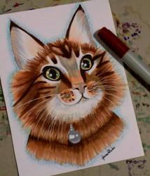Smokey by Joanna-artist