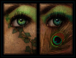 Peacock and Ivy Eyes by Christi-Dove