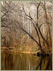 Creekdom by uxinta-himmel