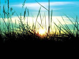 Summer Sunrise by s-w
