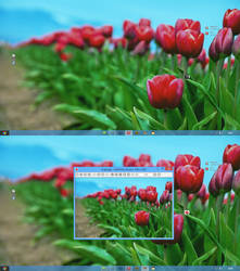 Windows 8 2013 by FataMorgana2012