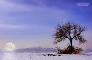 Moon River by UgurDoyduk
