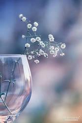 Spirit of glass by UgurDoyduk