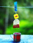 Fresh spring tea by UgurDoyduk