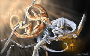 Dragons by bruinstarz