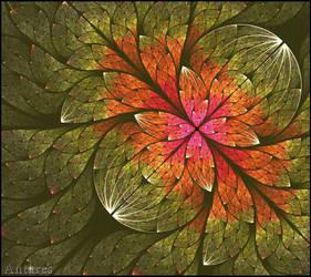 Splits Elliptic Bloom by Antares2