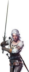 The Witcher 3 - Ciri by IvanCEs