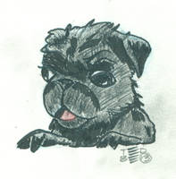 Baby Pug by tedbergeron