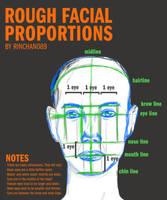 Rough Facial Proportions by rinchan089