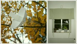 Paper-birds. by froststick