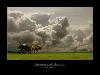 Homeward Bound by rad-ix