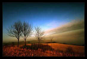Misty Mountain by rad-ix