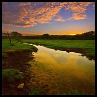 Twilight by rad-ix
