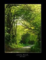 Leafy Road by rad-ix