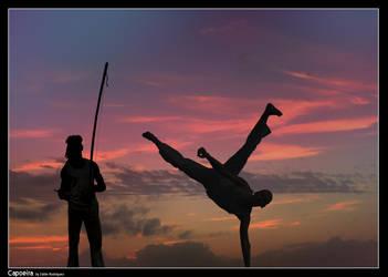 capoeira by 3DD13M14M1