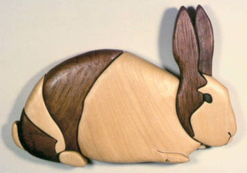 rabbit by cl2007