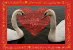Two Young Swans - Valentine by steppeland