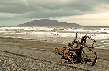 Washed Ashore by jojo22