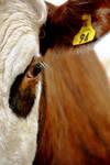 Intimate Bullseye by jojo22