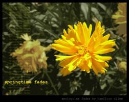 springtime fades by hamdiggy