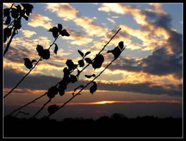 minnesota sunrise 14 by hamdiggy