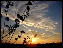 minnesota sunrise 15 by hamdiggy